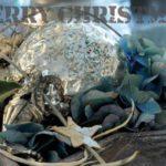 Weihnachtskarte-Postkarte_220