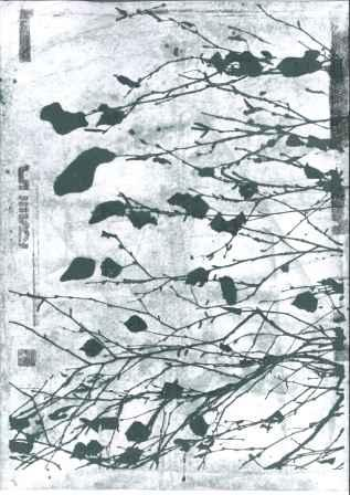 Serie Birke-02-Postkarte_327